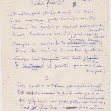 Confesiune și poezie dedicate lui Dimitrie Stelaru